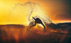 gallery-surfer1